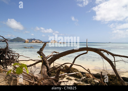 View of the beach at La Digue Island, Seychelles. - Stock Photo