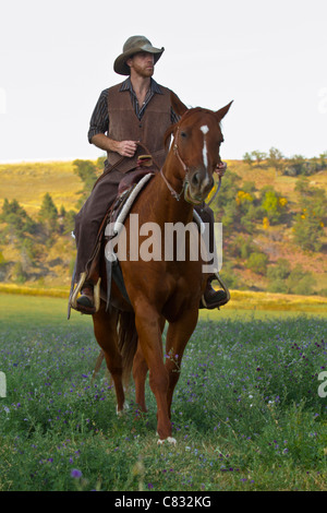 Cowboy on a brown horse gently rides forward - Stock Photo