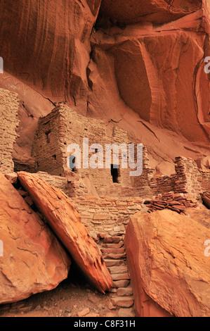 Cliff dwelling, Anasazi, Ruin, Monticello, River House, San Juan River, Bluff, Colorado Plateau, Utah, USA, United - Stock Photo