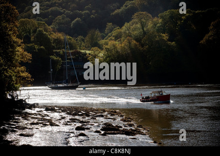The Dartmouth - Dittisham Ferry, at Dittisham and/or Greenway Gardens. Dittisham is a village and civil parish in - Stock Photo