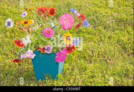 Colorful spring flowers in a square container on green grass - Stock Photo