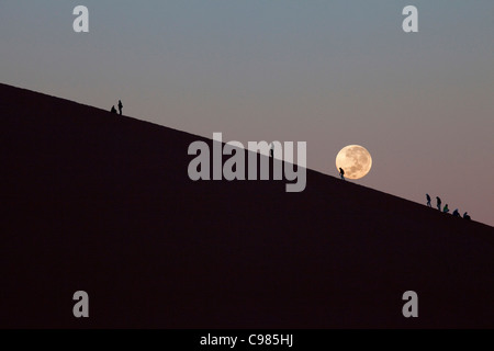 Tourists climbing Dune 45 at sunrise with setting moon - Stock Photo