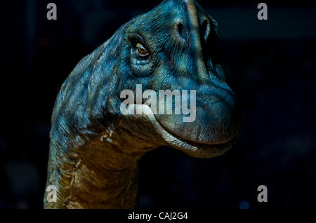 The brachiosaurus photographed during Walking With Dinosaurs --  The Live Experience Thursday, January 8, 2008 at - Stock Photo