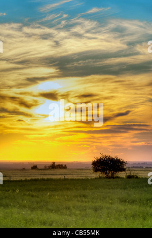 a sunset on the praries - Stock Photo