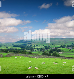 Wensleydale North Yorkshire England - Stock Photo