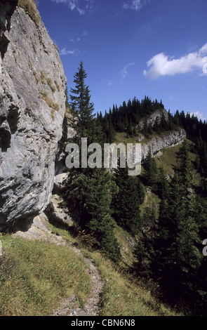 View of natural reserve Ohniste at Janska dolina in Nizke Tatry mountains, Slovakia. - Stock Photo