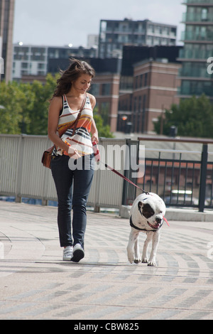 young woman walking her dog at Canary Wharf, London, England - Stock Photo