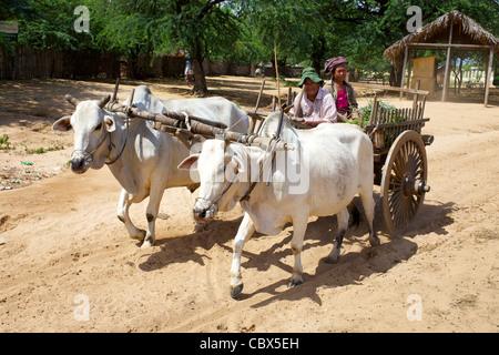 An Ox cart carries two farmers in Bagan, Myanmar - Stock Photo