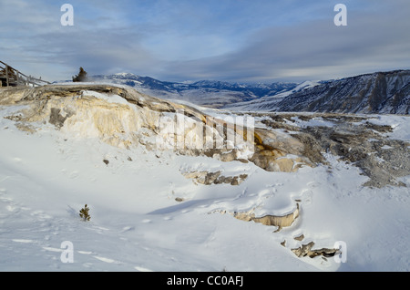 The Cupid Spring in snow. Mammoth Hot Springs, Yellowstone National Park, Wyoming, USA. - Stock Photo