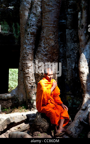 Buddhist monk at Ta Prohm, temple built in the Bayon style, Angkor area, Siem Reap, Cambodia, Asia - Stock Photo