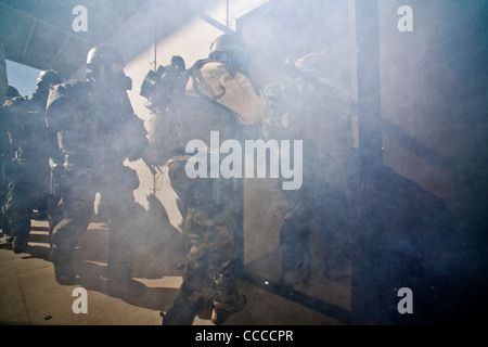 Hidden by smoke from a grenade, FBI SWAT  team members wearing specialized 'Weapons of Mass Destruction' equipment - Stock Photo