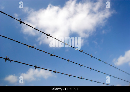 Barbed wire fence against a clear blue sky - Stock Photo