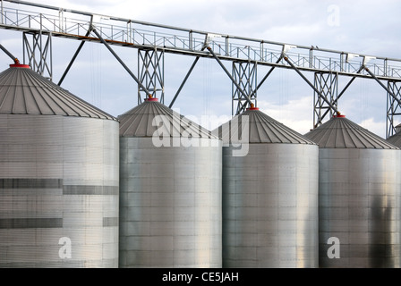 Steel Silos, used to store grain from various cereal crops, in the Central West region of New South Wales, Australia - Stock Photo