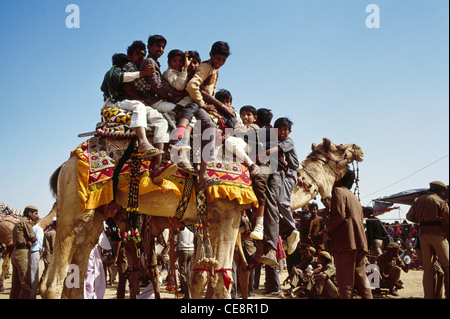 SSK 80410 : Pushkar Fair contest eleven indian people on one camel Rajasthan India - Stock Photo