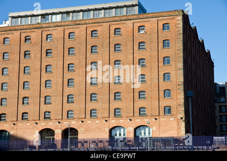 Former victorian railway warehouse(1867), now 'The Place' Apartment Hotel, Ducie Street, Piccadilly, City Centre, - Stock Photo