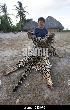 Rancher holding a Jaguar pelt, shot after it strayed onto the farm, Rupununi Savannah, Guyana, South America - Stock Photo