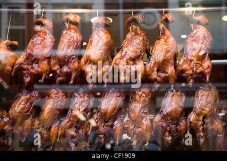 Crispy roast duck on spits in a chinese restaurant shop window, Chinatown, London - Stock Photo