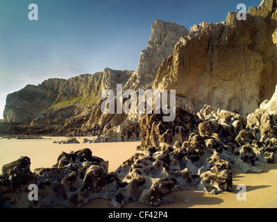 Golden sands by weathered rocks and majestic cliffs in Mewslade Bay. - Stock Photo