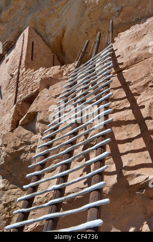 Ladder at Balcony House cliff dwelling in alcove at Chaplin Mesa, Cliff Palace Loop, Mesa Verde National Park, Colorado, - Stock Photo