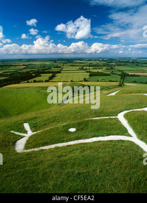 Head and eye of the chalk figure carved on the hillside of White Horse Hill above the flat-topped mound where St - Stock Photo
