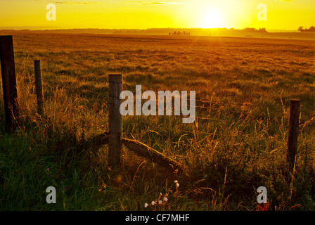 A distant view of the World Heritage site Stonehenge in Wiltshire, England looking across fields on a summer's sunrise. - Stock Photo