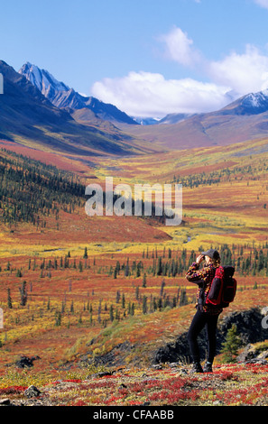 Young woman hiking near North Fork Pass, Southern Ogilvie Mountains, Yukon, Canada. - Stock Photo