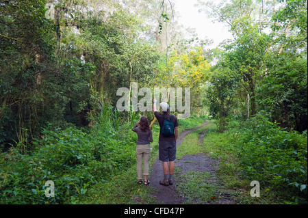 Bird watching near Lago de Yojoa, Lake Yojoa, Honduras, Central America - Stock Photo
