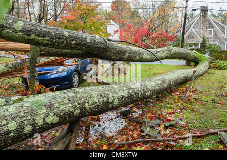 Chappaqua, NY, USA 30 Oct 2012: The day after hurricane force winds from Hurricane Sandy hit Westchester County - Stock Photo