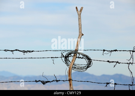Wire fencing is posted along the Oracle Ridge Trail on Mount Lemmon, Santa Catalina Mountains, Arizona, USA. - Stock Photo