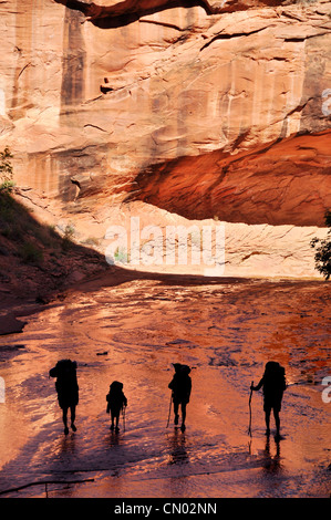 Family backpacking in Coyote Gulch, a tributary of the Escalante River in Southern Utah. - Stock Photo