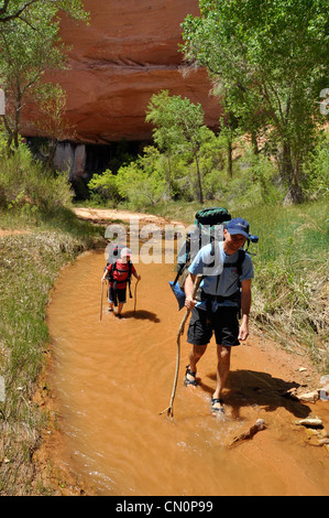 Father and son backpacking in Coyote Gulch, a tributary of the Escalante River in Southern Utah. - Stock Photo