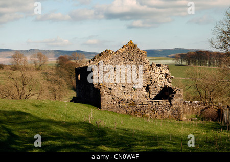 An old ruined farm house in the North Yorkshire Dales National park near Hetton - Stock Photo