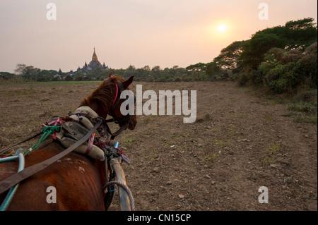 Horse cart ride in Bagan Myanmar - Stock Photo