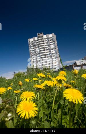 Estonia (Baltic States), Harju Region, Tallinn, European Capital of Culture 2011, building near Pirita beach - Stock Photo