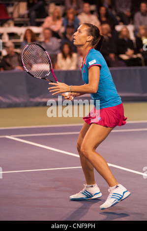 Professional tennis player, Flavia Pennetta. - Stock Photo