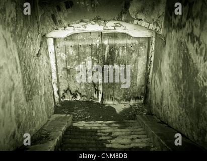 Creepy looking grunge basement door with stairs - Stock Photo