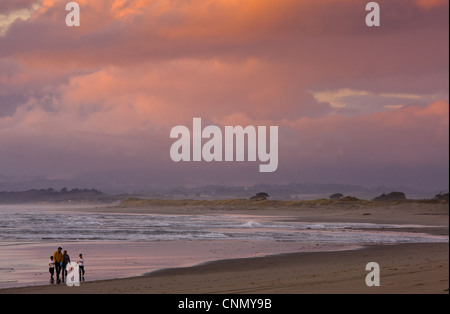 Family beach-combing on beach in evening light, Pacific Ocean, Moss Landing, Central California, U.S.A., november - Stock Photo