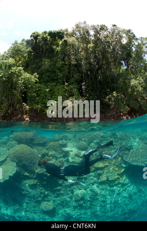Split level shot of snorkeller at Restorf Island, Kimbe Bay, Papua New Guinea. - Stock Photo