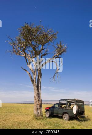 A peaceful picnic stop in the Masai Mara, Kenya, East Africa, Africa - Stock Photo