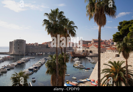 Palm trees and the harbour, Dubrovnik Old Town, Dubrovnik, Croatia, Europe - Stock Photo
