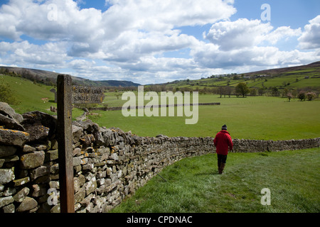 Walker on Single File meadow Footpath, Man & wooden sign near Healaugh walking towards the River Swale and Reeth, - Stock Photo