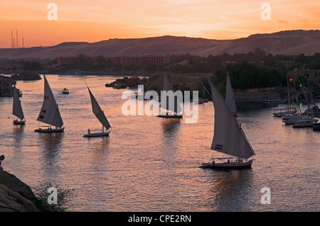 Feluccas on the River Nile, Aswan, Egypt, North Africa, Africa - Stock Photo