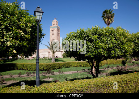 Koutoubia Mosque Minaret and Librairie Municipal, Marrakesh, Morocco, North Africa, Africa - Stock Photo