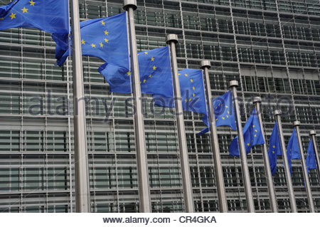 Brussels Belgium European flags flying in front of the Berlymont building, the head offices of the European Commission. - Stock Photo