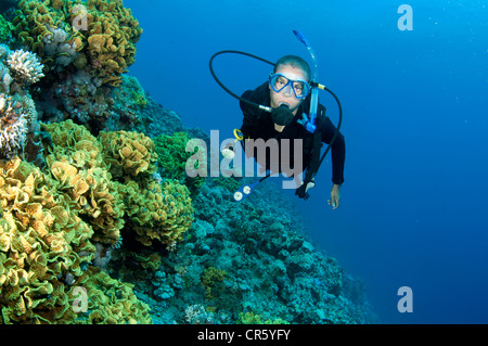 male scuba diver swims in the red sea on a coral reef - Stock Photo