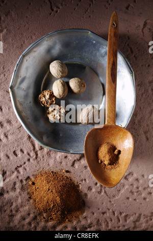 Nutmegs (Myristica fragrans), on a metal plate with a wooden spoon and ground nutmeg on a rustic stone base - Stock Photo