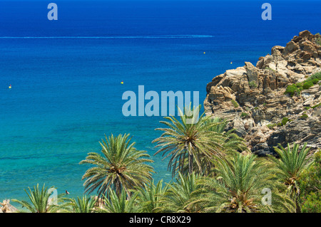 Palm beach of Vai, Crete, Greece, Europe - Stock Photo