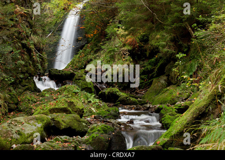 Waterfall in the Ravennaschlucht gorge in Hoellental, valley of hell, in autumn, near Freiburg, Black Forest, Baden - Stock Photo