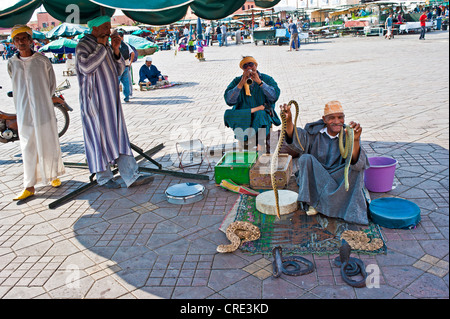 Snake charmers sitting on Jemaa el-Fnaa square, Marrakech, Morocco, Africa - Stock Photo