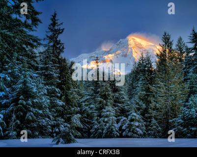 Mt. Rainier after snowstorm. Mt. Rainier National Park, Washington - Stock Photo